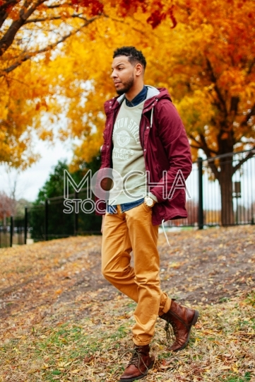 Handsome African American Man in Park
