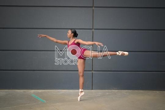 Ballerina in Perfect Ballet Pose