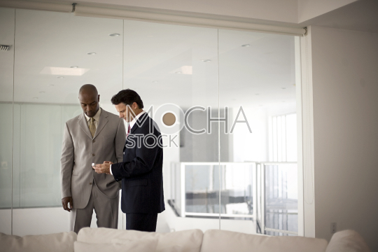 Two businessmen looking at a cell phone